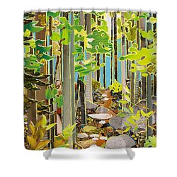 Great Maine Woods Shower Curtain