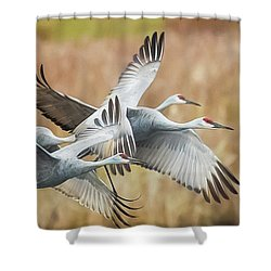 Great Migration  Shower Curtain