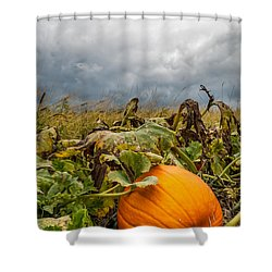 Great Pumpkin Off Center Shower Curtain