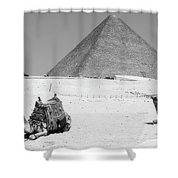 Shower Curtain featuring the photograph great pyramids of Giza by Silvia Bruno