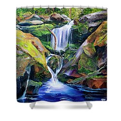 Great Smoky Waterfall Shower Curtain