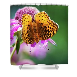 Great Spangled Fritillary Butterfly Shower Curtain by Christina Rollo
