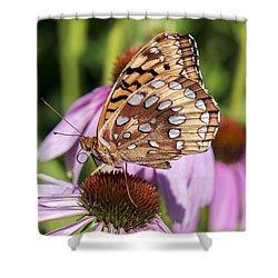 Shower Curtain featuring the photograph Great Spangled Fritillary by Stephen Flint