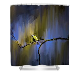 Shower Curtain featuring the photograph Great Tit On Branch #h3 by Leif Sohlman