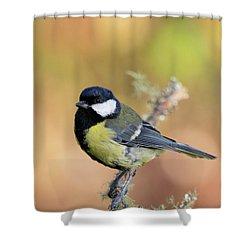 Great Tit - Parus Major Shower Curtain