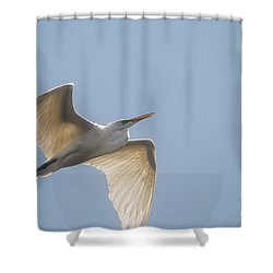 Shower Curtain featuring the photograph Great White Egret - 2 by David Bearden