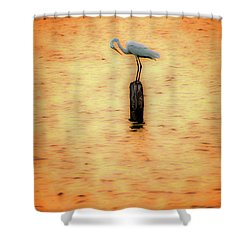 Great White Heron On Currituck Sound Outer Banks Shower Curtain