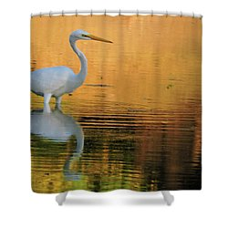 Great White On Gold Shower Curtain