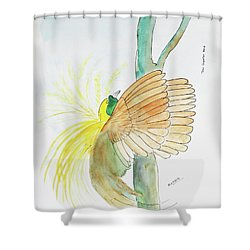 Greater Bird Of Paradise Shower Curtain