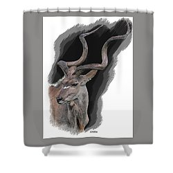 Greater Kudu Shower Curtain