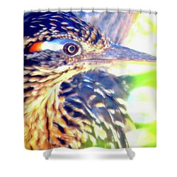Greater Roadrunner Portrait 2 Shower Curtain