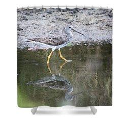 Greater Yellowleg Shower Curtain