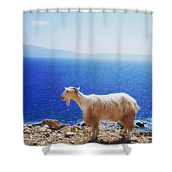 Greek Style Shower Curtain