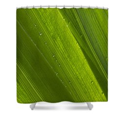 Green Abstract 2 Shower Curtain