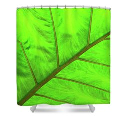 Green Abstract No. 5 Shower Curtain