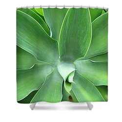 Green Agave Leaves Shower Curtain