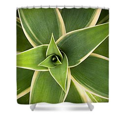 Green Agave Shower Curtain by Catherine Lau