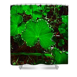 Green And Drops Shower Curtain