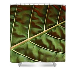Green And Red Leaf Silky Dunes 1 Shower Curtain