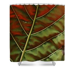 Green And Red Leaf Silky Dunes 2 Shower Curtain