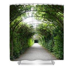 Green Arbor Of Mirabell Garden Shower Curtain by Carol Groenen