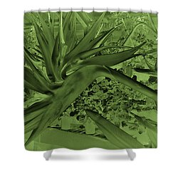 Shower Curtain featuring the photograph Green Bird Of Paradise by Nareeta Martin