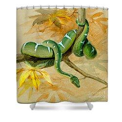 Green Boa Shower Curtain