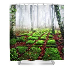 Green Brick Road Shower Curtain