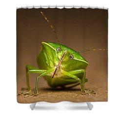 Green Bug Shower Curtain