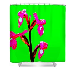 Green Champagne Orchid Shower Curtain by Richard Patmore