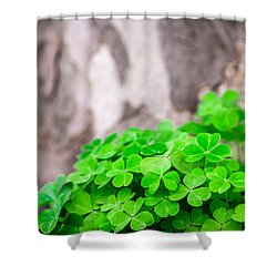 Shower Curtain featuring the photograph Green Clover And Grey Tree by John Williams