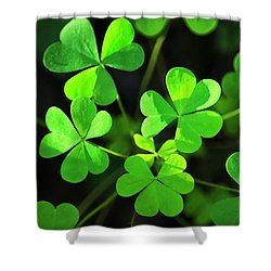 Green Clover Shower Curtain