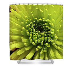 Green Delight Shower Curtain