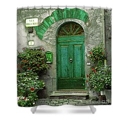Green Door Shower Curtain by Karen Lewis