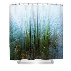 Morning At The Lake Shower Curtain