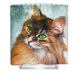 Green-eyed Maine Coon Cat - Remastered Shower Curtain