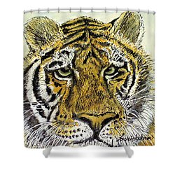 Green Eyed Tiger Shower Curtain