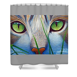 Green Eyes Shower Curtain by Brian  Commerford
