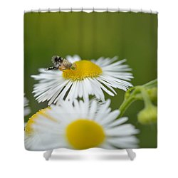 Green Eyes Shower Curtain
