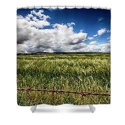 Green Fields Shower Curtain by Douglas Barnard