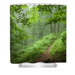 Green Forest Shower Curtain by Evgeni Dinev