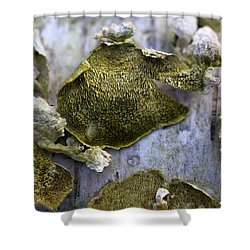 Green Fungi Shower Curtain