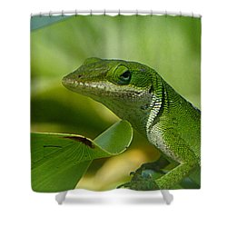 Green Gecko On Green Leaves Shower Curtain