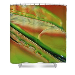 Green Glaze Shower Curtain