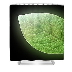 Green Glow Shower Curtain