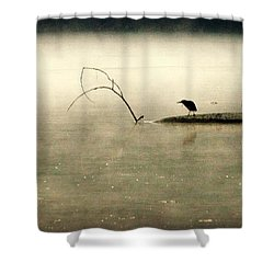 Green Heron In Dawn Mist Shower Curtain