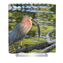 Green Heron With Fish Shower Curtain