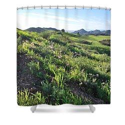 Shower Curtain featuring the photograph Green Hills Purple Flowers - Rocky View by Matt Harang