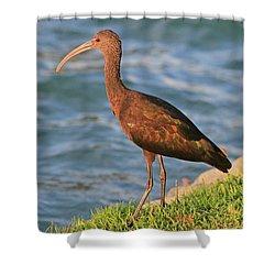 Green Ibis 4 Shower Curtain