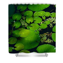Green Islands Shower Curtain